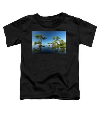 Spring Vistas At Lake Disston Toddler T-Shirt