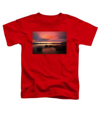 Sunset Reeds On Utah Lake Toddler T-Shirt