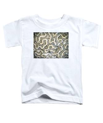 Fossilized Brain Coral Toddler T-Shirt