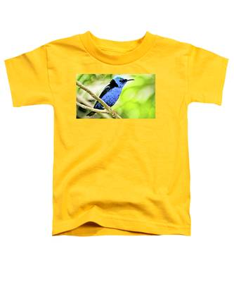 Red Legged Honeycreeper Toddler T-Shirt