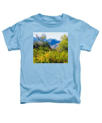 Toddler T-Shirt featuring the photograph Deep Desert Valley In A Sonoran Desert Spring by Judy Kennedy