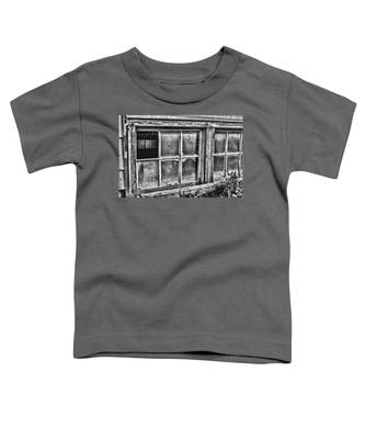 Dirty Windows Toddler T-Shirt