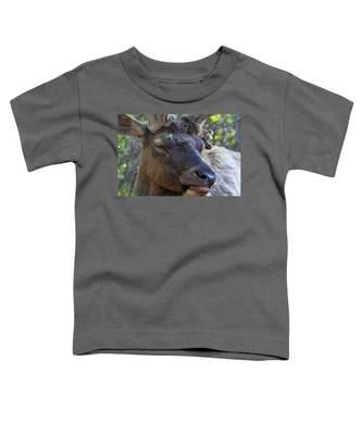 Elk Chuckle Toddler T-Shirt