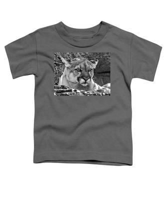 Mountain Lion Bergen County Zoo Toddler T-Shirt