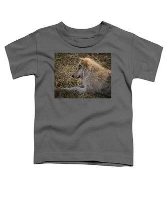 Needed Break Toddler T-Shirt