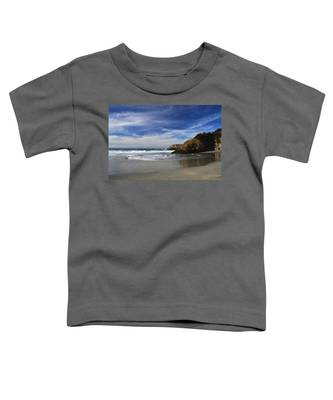 Perfect Day Toddler T-Shirt