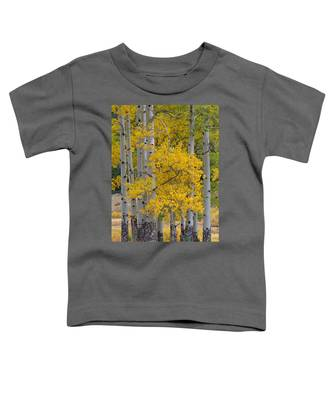 Aspen Bouquet Toddler T-Shirt