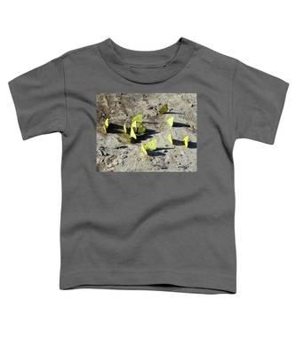 Butterflies Toddler T-Shirt