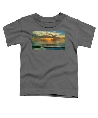 Carlsbad Beach  Toddler T-Shirt