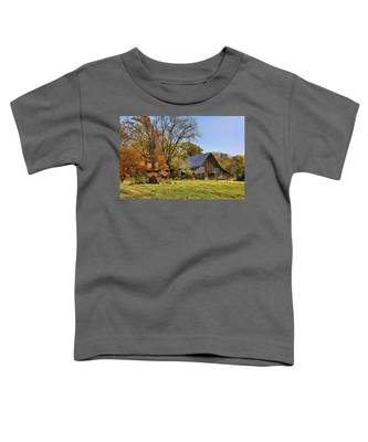 Country Barn And A Pink Flamingo By H H Photography Of Florida Toddler T-Shirt