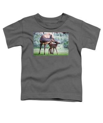 Cow And Calf Elk Toddler T-Shirt