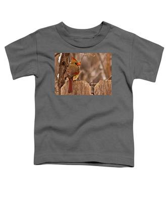 Female Cardinal On The Fence Toddler T-Shirt