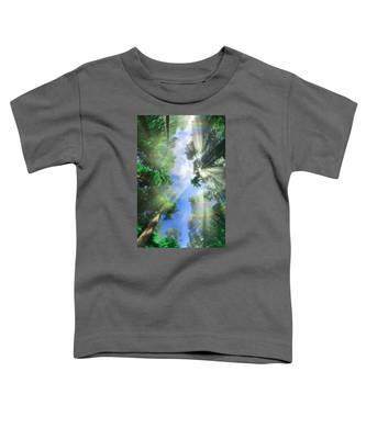 Glory Amongst Redwoods Toddler T-Shirt