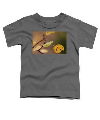 Jewels Of Autumn Toddler T-Shirt