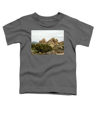 Joshua Park 4 Toddler T-Shirt