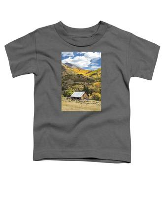 Shack With Relics Toddler T-Shirt