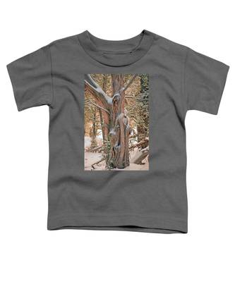 Snowy Dead Tree Toddler T-Shirt