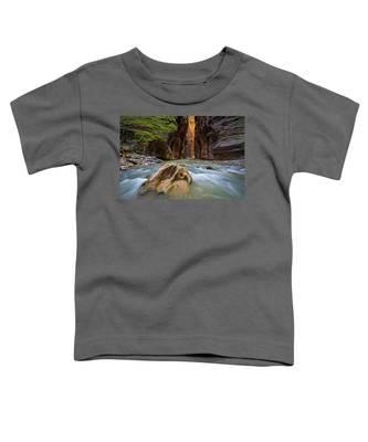 Wall Street Of The Narrows Toddler T-Shirt