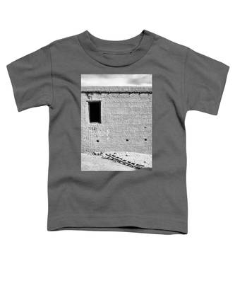 Window And Ladder, Shey, 2005 Toddler T-Shirt