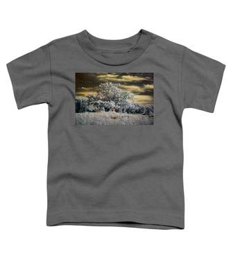 Witness To History Toddler T-Shirt