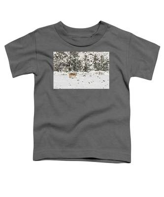 W16 Toddler T-Shirt