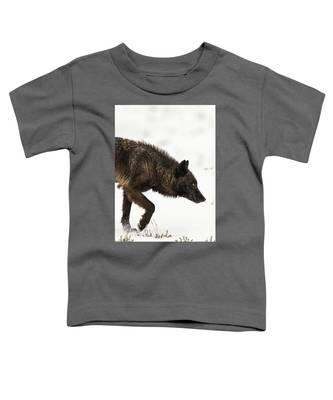 W46 Toddler T-Shirt