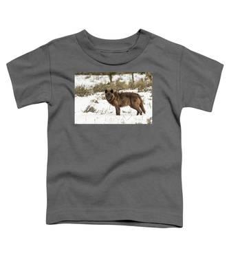 W7 Toddler T-Shirt