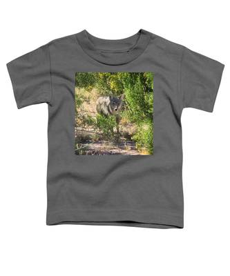 Toddler T-Shirt featuring the photograph Cautious Coyote by Judy Kennedy