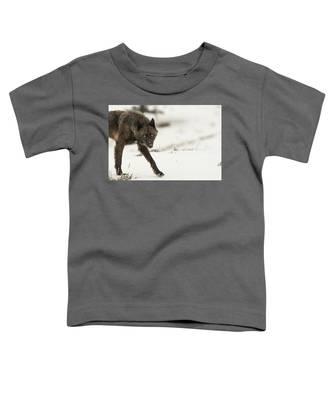 W43 Toddler T-Shirt