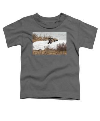 W57 Toddler T-Shirt