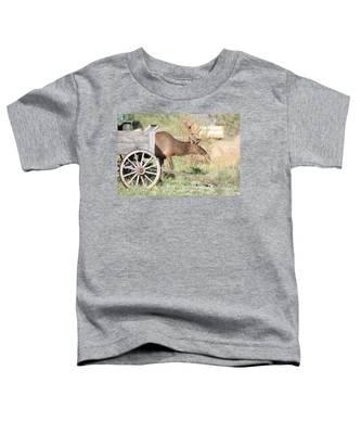 Elk Drawn Carriage Toddler T-Shirt