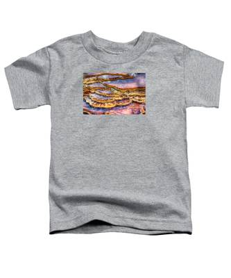 Pancakes Hot Springs Toddler T-Shirt