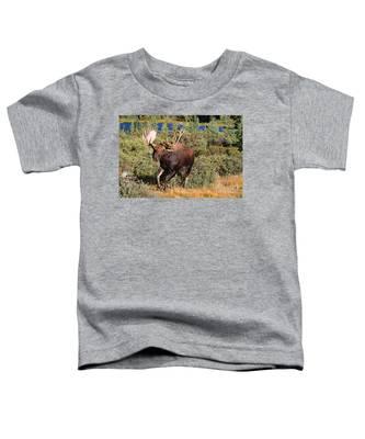 Charging Bull Toddler T-Shirt