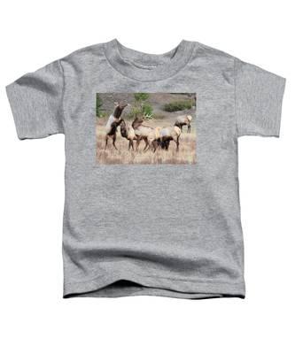 Boxing Match Toddler T-Shirt