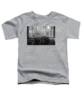 Allan Gardens Toddler T-Shirt by Ross Henton