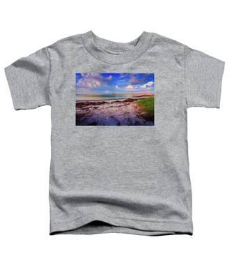 Anna Maria City Pier Toddler T-Shirt