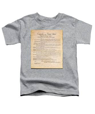 Bill Of Rights Toddler T-Shirt
