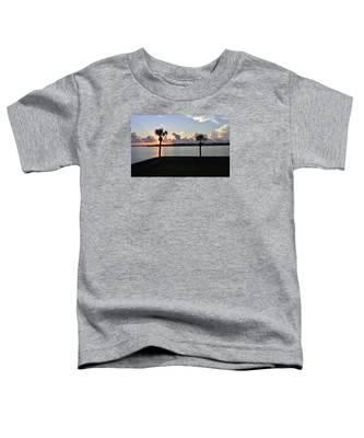 Celebrate 450 Landing Day Toddler T-Shirt