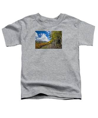 Fall In Colorado Toddler T-Shirt