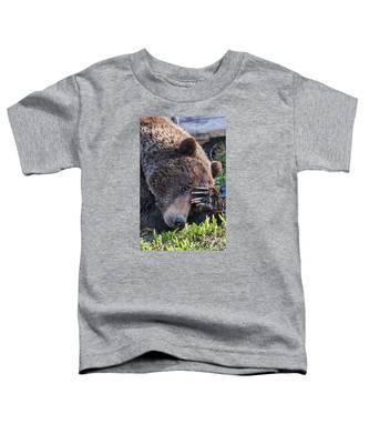Lazy Bear Toddler T-Shirt