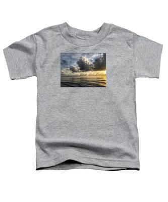 Loan Pelican Toddler T-Shirt