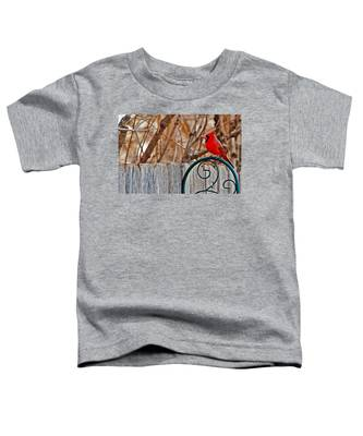 Male Cardinal Toddler T-Shirt