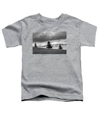 Moody Meadow, Tsenkher, 2016 Toddler T-Shirt