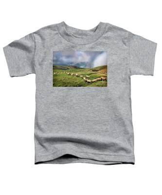 Sheep In Carphatian Mountains Toddler T-Shirt
