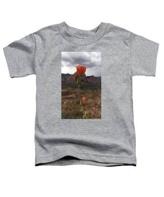 Sorbet Toddler T-Shirt