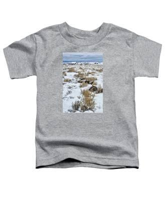 Winter Light In The High Desert Toddler T-Shirt