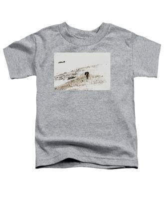 W52 Toddler T-Shirt