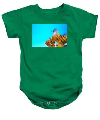 The Cactus Wren Baby Onesie