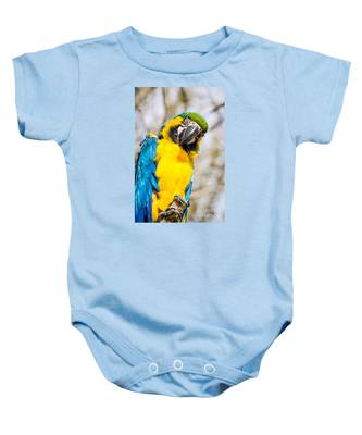 Blue And Gold Macaw Parrot Baby Onesie