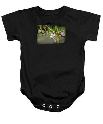 Bald Cypress Tree Seed Pods Baby Onesie